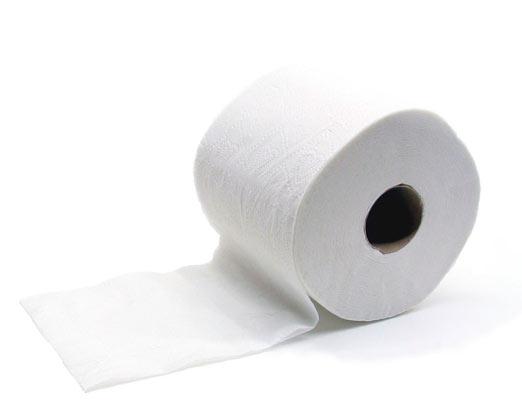Nace el papel higi nico revista ayer y hoy for Accesorios para bano papel higienico