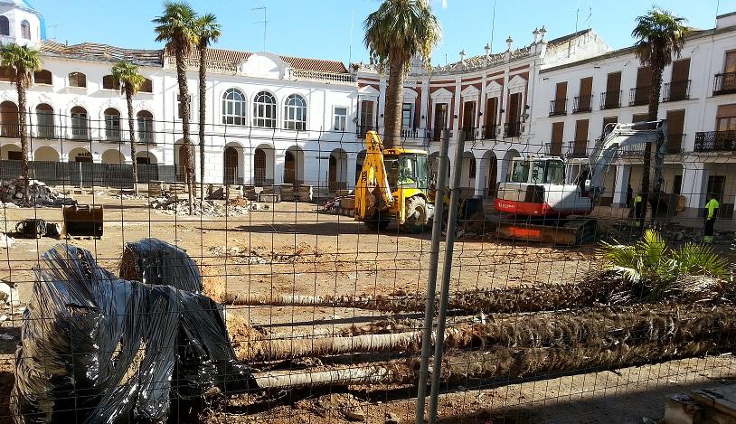 Trasplantados los palmitos de la plaza de Manzanares