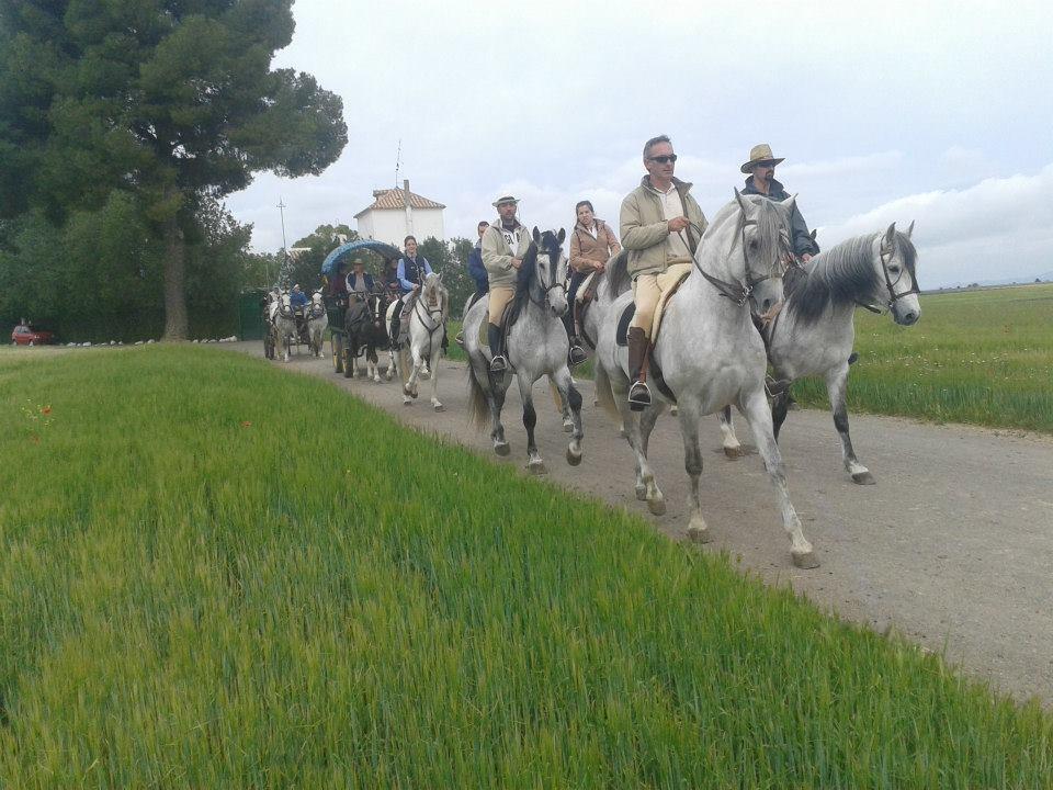 Más de un centenar de participantes en la 18ª Ruta de los Molinos Harineros