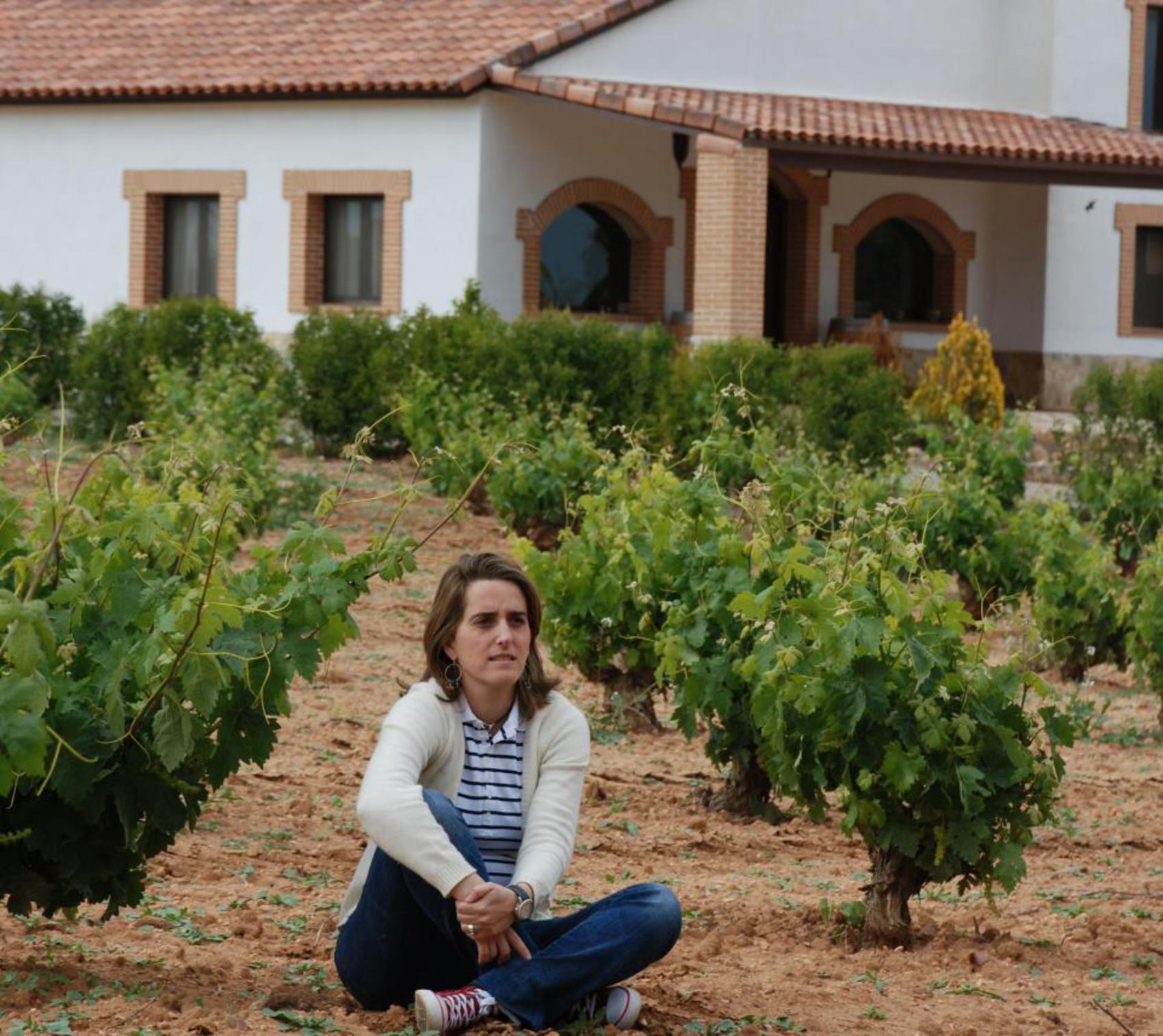 La Asociación de vino ecológico » Spanishorganicwines » elige FENAVIN para darse a conocer en el mundo del vino