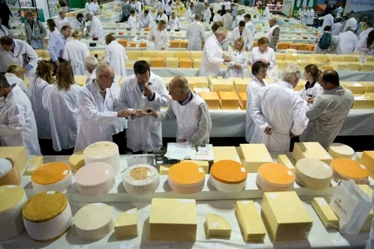 El queso de Ojos del Guadiana consigue un prestigioso premio internacional
