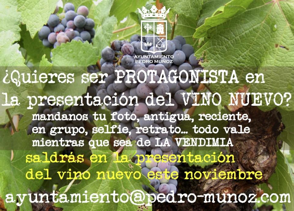 Necesitamos tu ayuda para el día de presentación del vino nuevo