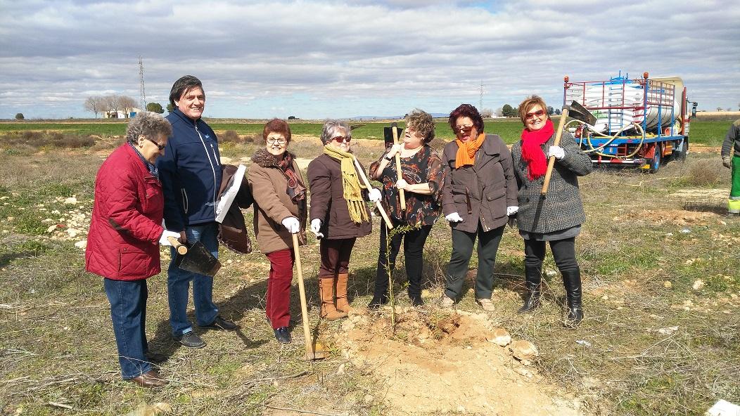 El área de Medio Ambiente y AFAMMER realizaron una plantación de árboles en Consolación