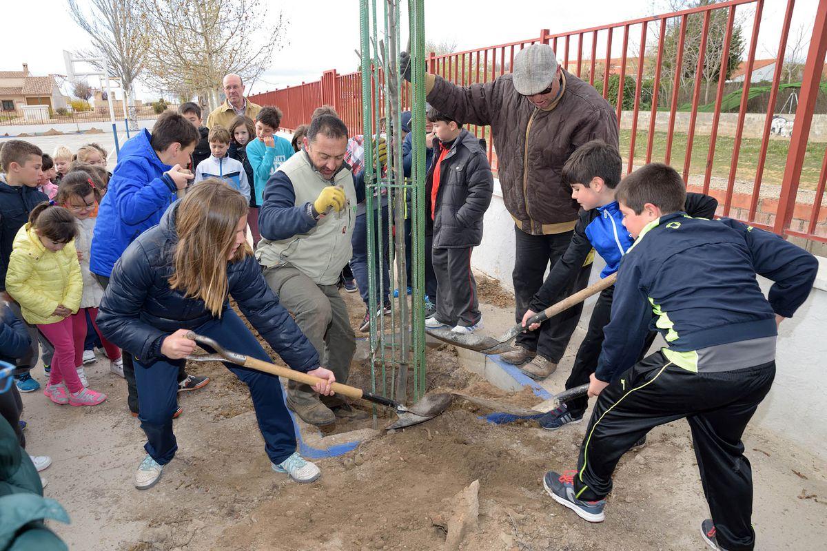 Los escolares de Argamasilla de Alba participaron en la plantación de arboles
