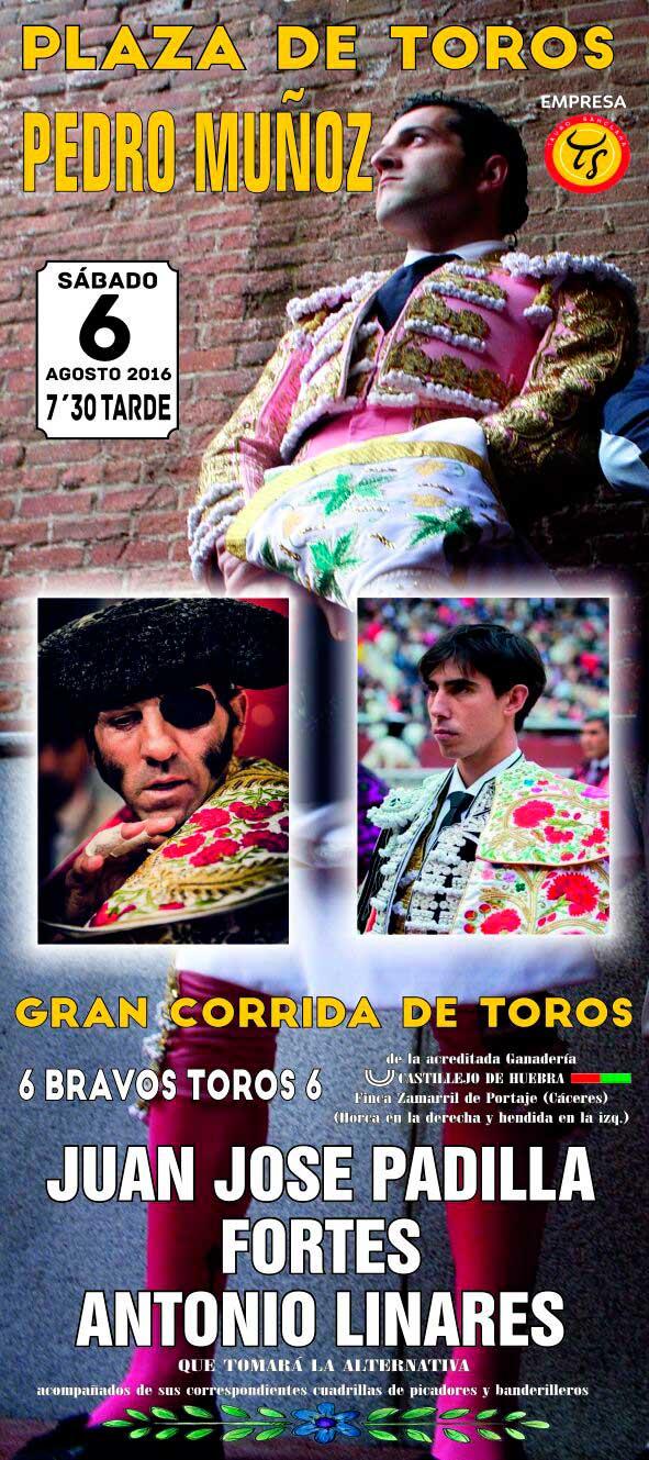 Toros en Pedro Muñoz