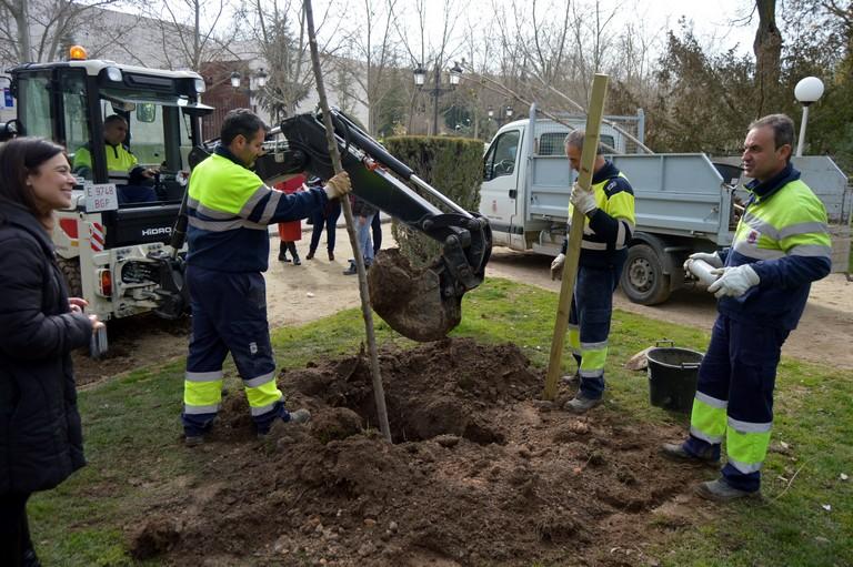 Ciudad Real plantará en dos años más de 300 árboles en distintas zonas verdes