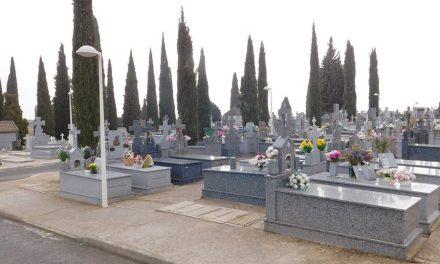 El cementerio de Daimiel cerrará martes y miércoles por la fumigación de sus cipreses