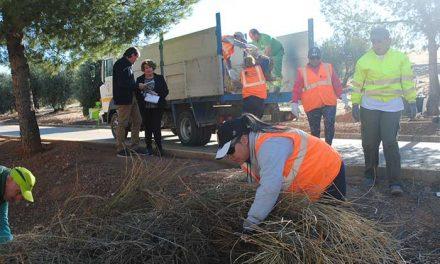 Un Plan de Empleo con 40 trabajadores se suman a la limpieza y mantenimiento de zonas verdes de Valdepeñas