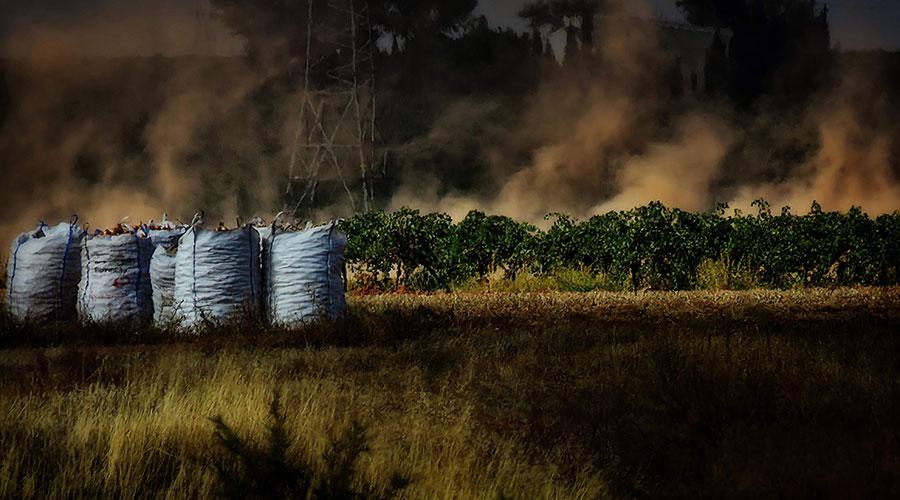 Fallados los premios 'Manzanares' de fotografía en su duodécima edición