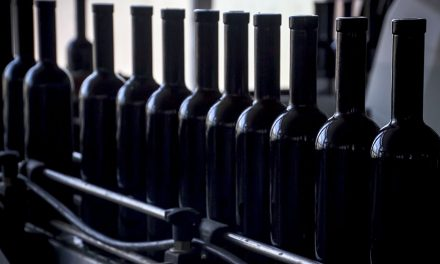 Nuevo récord de embotellado para los vinos de la Denominación de Origen La Mancha