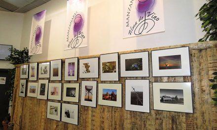Concursos de fotografía, decoración de copas y escaparates para 'Manzanares, Alma del Vino'