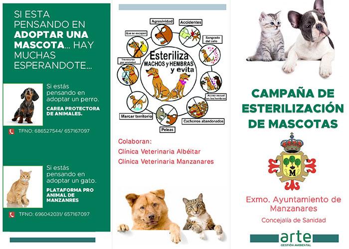 Campaña municipal sobre los beneficios de esterilizar a las mascotas