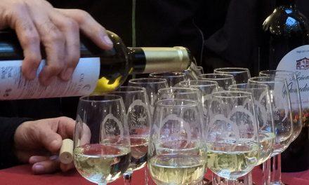 Los mejores vinos de Manzanares se citan con creativas tapas