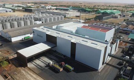 Bodegas Yuntero concluye la vendimia con una producción récord de 146 millones de kilos de uva