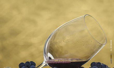Catas, maridaje y premios para presentar la nueva añada de vinos de Manzanares