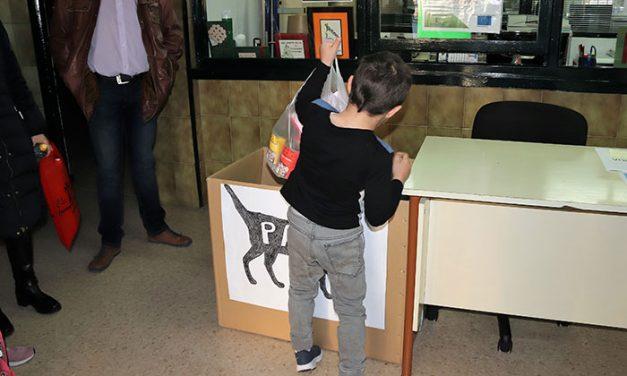 La Plataforma Pro Animal recoge alimentos y material para gatos en los centros educativos