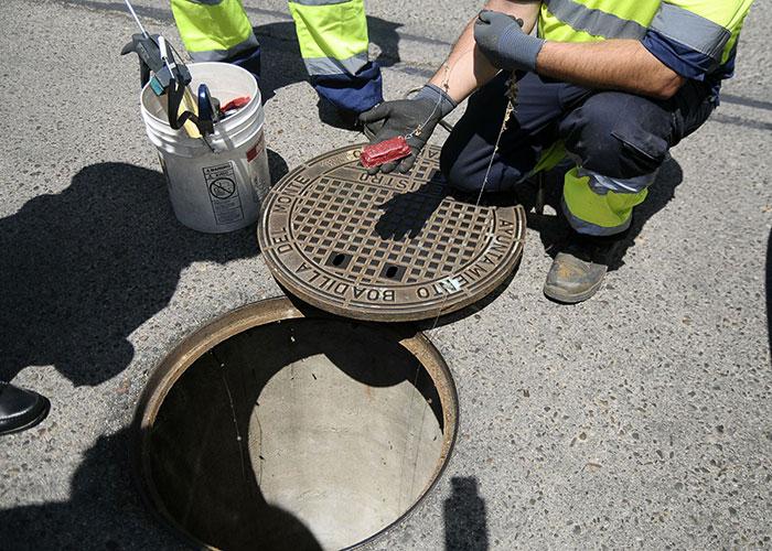 El Ayuntamiento de Boadilla refuerza el control de plagas en el casco urbano y Las Eras