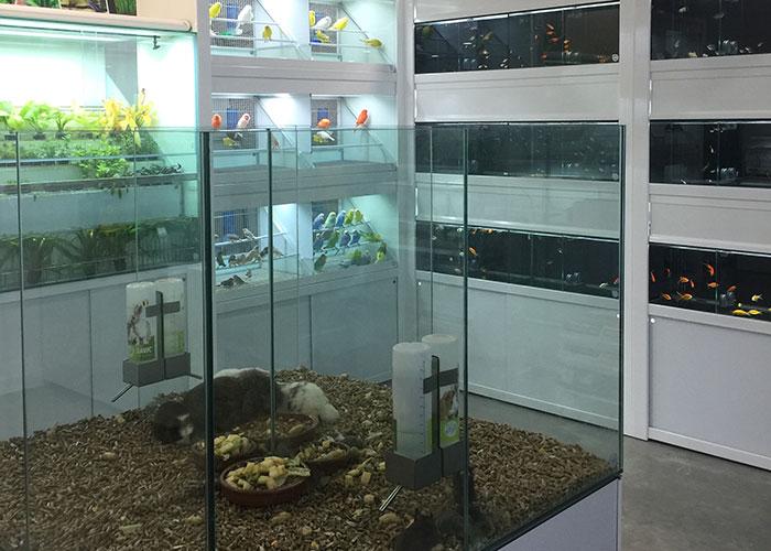 Anysa Ganadera-NutriZoo abre nuevas instalaciones con más productos y servicios a una relación calidad-precio extraordinaria