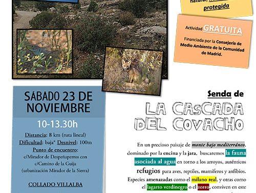 'Red Natura 2.000' organiza una senda a la Cascada del Covacho para este sábado