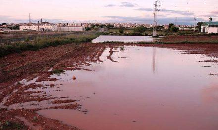 La llovida de San Marcos, la mayor del siglo en La Solana