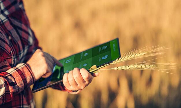 Nuevo apoyo de Globalcaja al sector agropecuario con el Aval SAECA