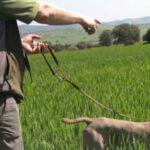 Nuevo apoyo de Globalcaja a FERCATUR para la promoción de sectores estratégicos en C-LM, como la caza y el turismo de naturaleza