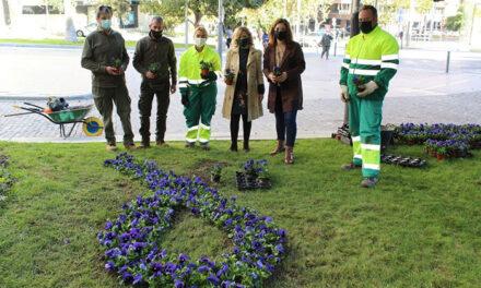 El Ayuntamiento de Jaén planta 200 pensamientos en la Plaza de las Batallas para formar un gran lazo morado que reivindica el fin de la violencia contra la mujer