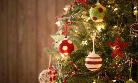 Pinto da la bienvenida a la Navidad 2020