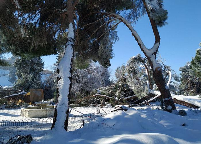 """Los servicios técnicos evalúan los daños ocasionados por el temporal en instalaciones municipales y privadas para elaborar un informe """"serio y riguroso"""""""