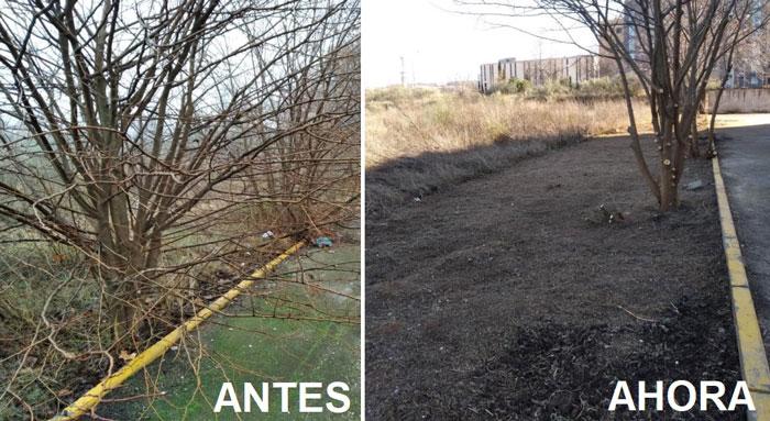 La limpieza y mantenimiento de espacios medioambientales continúa siendo el eje principal del Plan de Empleo en Toledo