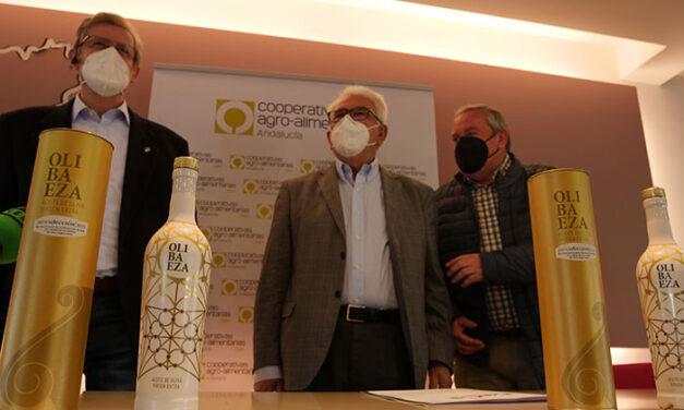 La cooperativa baezana El Alcázar produce 8 millones de kilos de aceite de oliva de gran calidad