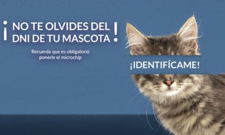 Boadilla inicia una campaña de concienciación para identificar con microchip a todas las mascotas