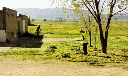 La limpieza y el mantenimiento de espacios verdes se refuerzan con la contratación de veinticuatro desempleados