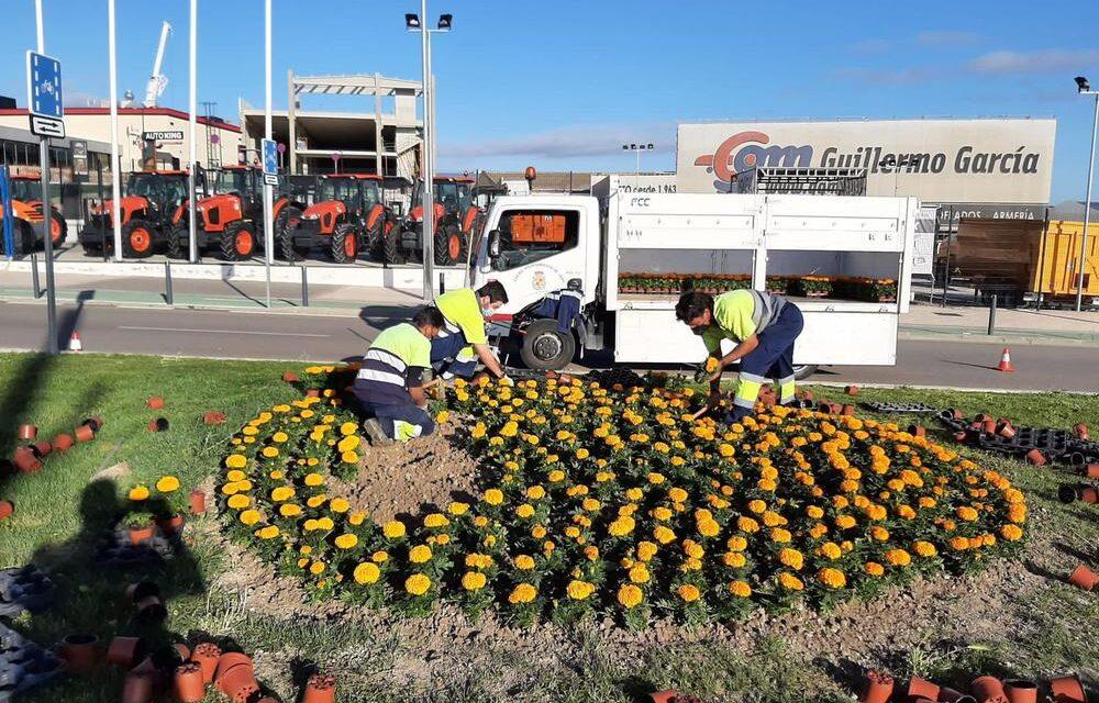 –El Ayuntamiento de Jaén planta más de 80.000 plantas de flor que proceden del Vivero Municipal de Vaciacostales de temporada para embellecer los jardines y zonas verdes de toda la ciudad