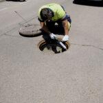 Continúan las tareas de mantenimiento de la campaña de control de plagas e insectos