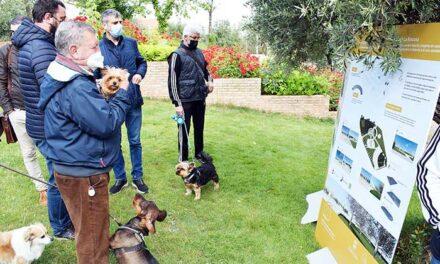 Los fondos europeos Feder reactivarán los espacios de convivencia y vida saludable en La Rincona