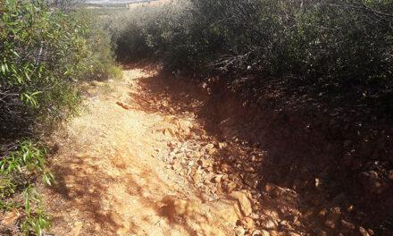 El Ayuntamiento de Puertolano destinará 126.000 euros al acondicionamiento y mejora de caminos gracias a la subvención de la Diputación provincial