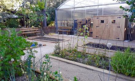 El Gobierno municipal mejora la accesibilidad de las instalaciones del Aula de Educación Ambiental