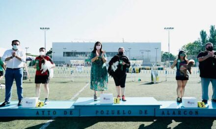 Entregados los trofeos a los ganadores de las pruebas Agility que se han celebrado en el polideportivo Carlos Ruiz